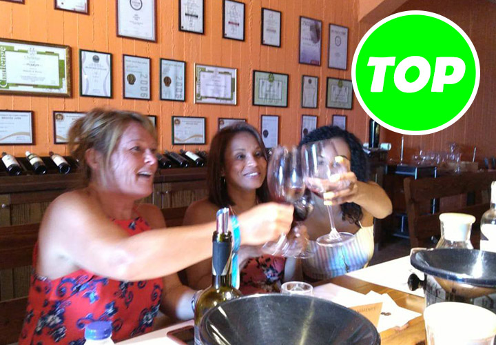 Wine Tasting and Pottery